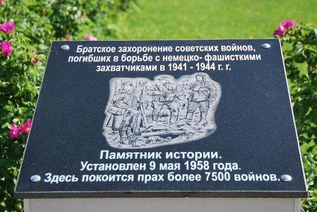 319Секс девушки г нальчика